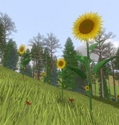 Vegetation_Slider