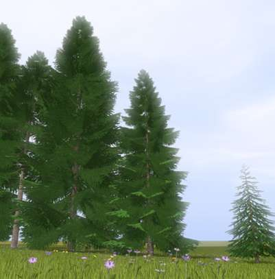 10 beeindruckende 3D-Modelle Bäume zum Download