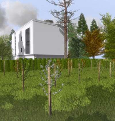 Hochdetailliertes 3D-Baum-Modell Kirsche mit Texturen und Materialien