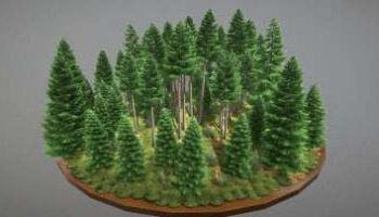 10 beeindruckende 3D-Modelle Fichtenwald für Visualisierungen und Animationen