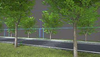 3D-Modell: Beschnittene Linden für Fahrbahn, beidseitigem Rad- und Gehweg