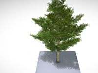 Platane-3d-modell-free-download