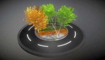 Detailliertes 3D-Baum-Modell Typ Linden, in verschiedenen Größen, mit Texturen und Materialien
