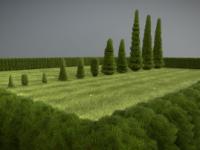 Detailliertes 3D-Baum-Modell Typ Zypresse, in verschiedenen Größen, mit Texturen und Materialien.