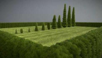 Detailliertes 3D-Baum-Modell Typ Zypresse, in verschiedenen Größen, mit Texturen und Materialien